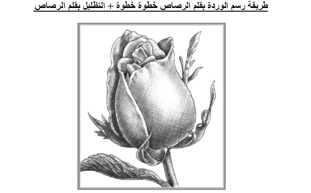 رسم الوردة بالقلم الرصاص خطوة خطوة